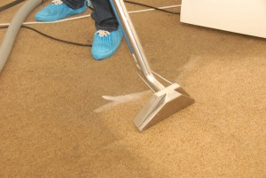 Steam carpet cleaning services in London